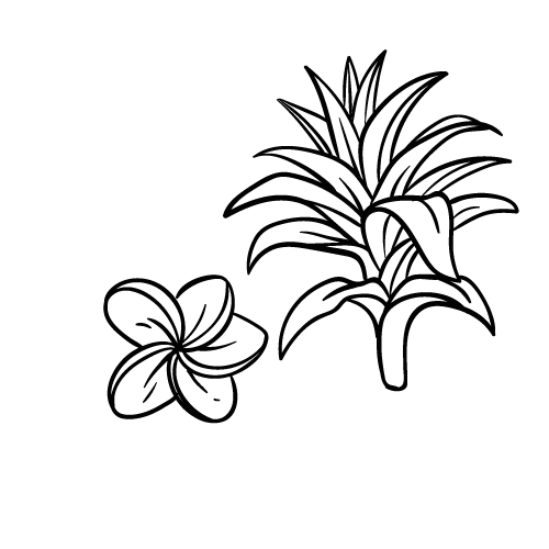 15 Gambar Lukisan Bunga Yang Indah